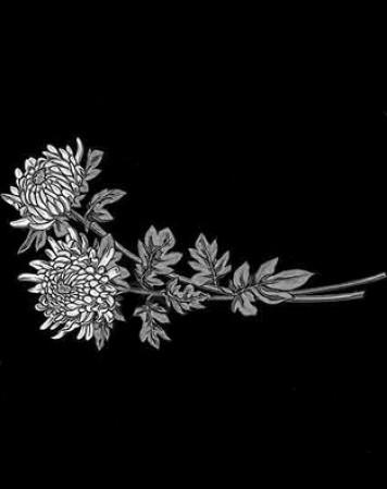 Цветы стандартные 21