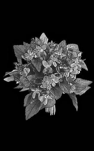 Цветы стандартные 23