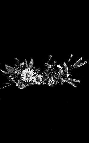 Цветы стандартные 19