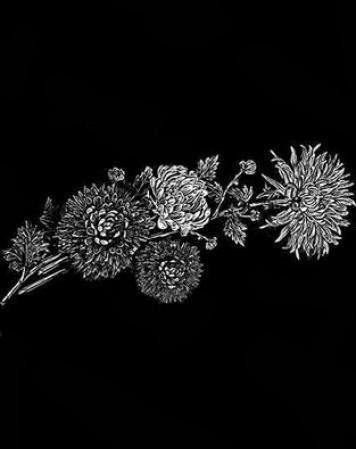 Цветы стандартные 17